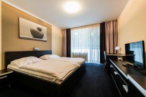 standard izba (1)